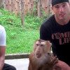 Mike Swick Vs The Monkey