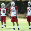 Cardinals' Michael Floyd Dislocates Three Fingers at Practice