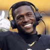 Mike Tomlin Calls Patriots 'a–holes', Antonio Brown Posts it on Facebook